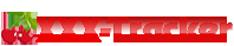 xxxtor.com logo